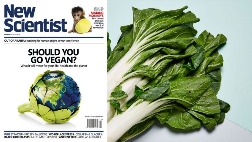 «New Scientist»: Why should you go vegan?